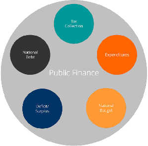 what is the public finance tax1